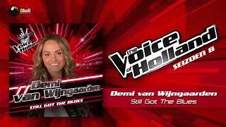 Demi van Wijngaarden - Still Got The Blues