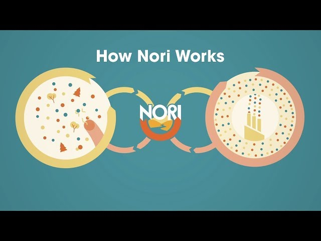Nori Carbon Removal Marketplace