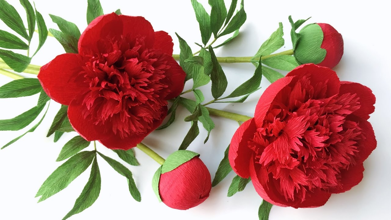 abc tv how to make red charm peony paper flower from crepe paper