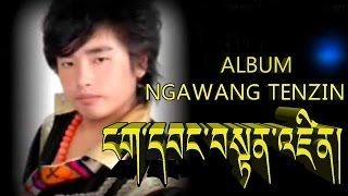 Album Collection of Ngawang tenzin kham tehor 12 Songs
