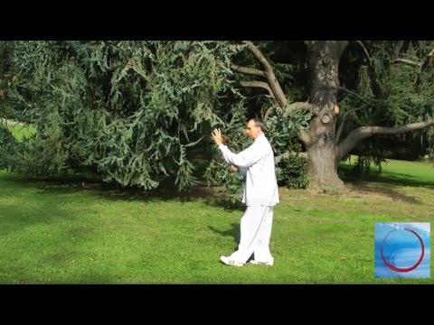 Forma 13 - Tai Chi stile Yang - Francesco Curci - Tai Chi online - Area download video