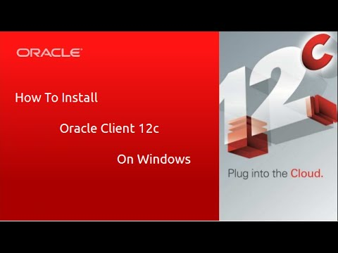 Working with the oracle database client.