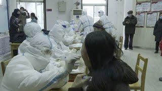 В Пекине обнаружили британский штамм коронавируса