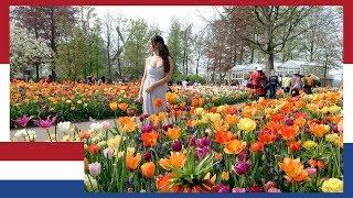 WORLDS BIGGEST DUTCH FLOWER GARDENS KEUKENHOF NETHERLANDS: I DID NOT EXPECT THIS   TRAVEL VLOG IV