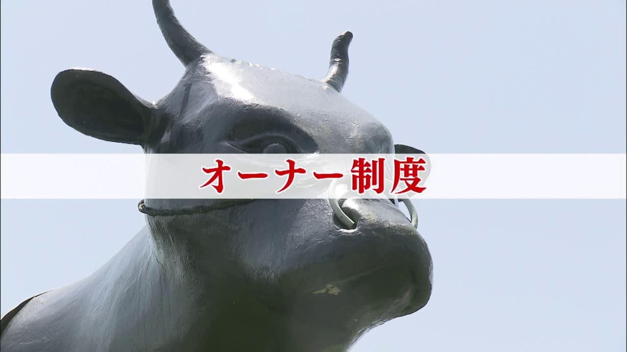 竹田市の畜産事情