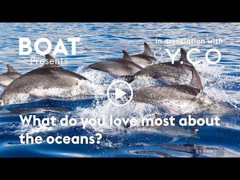 What do you love most about the oceans?