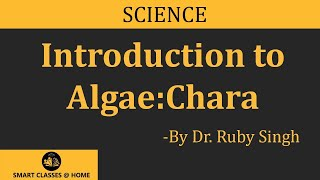 Algae:Chara lecture, BSc Botany by Dr. Ruby Singh Parmar, Biyani group of colleges