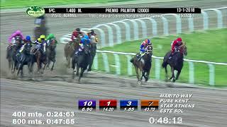 Vidéo de la course PMU PREMIO PALMTIN 2000