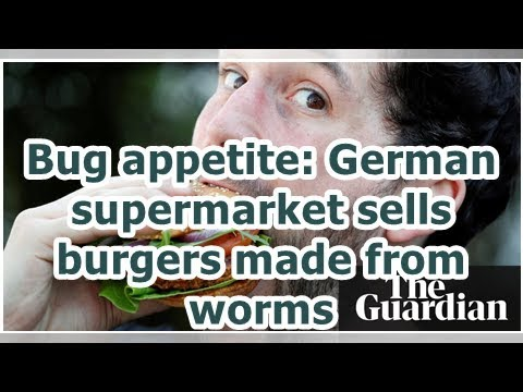24h News - Bug appetite: German supermarket sells burgers made from worms