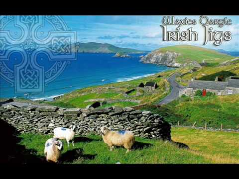 Traditional Irish Jig Medley: Geese In The Bog / The Wind That Shakes The Barley