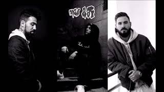 FLER feat. BUSHIDO & SHINDY - BERLINER ATTITUDE (MASKULINSUPPORT REMIX)