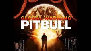 Pitbull ft. Chris Brown - Hope We Meet Again + Lyrics HD