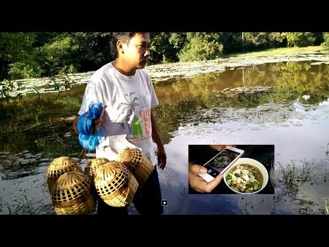 catching fish with cook laos food , Savannakhet laos