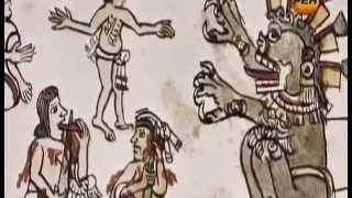 Сенсационные экспонаты, Тайна происхождения человека, Странное дело, документальные фильмы