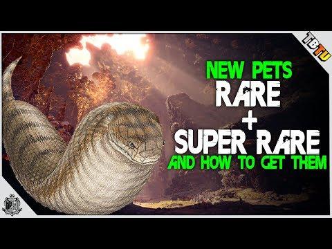 HOW TO GET ALL Rare + SUPER RARE TSUCHINOKO Kulve Taroth Pets! Monster Hunter World Event