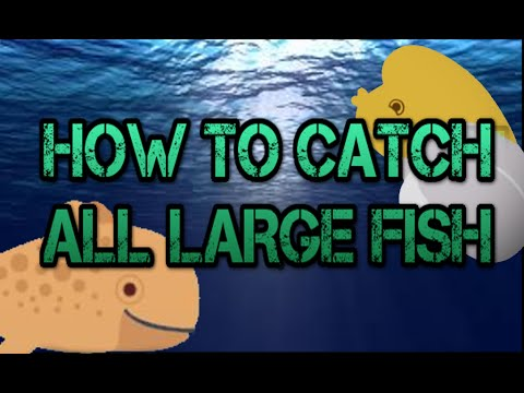Cat Goes Fishing: How To Catch ALL Large Fish
