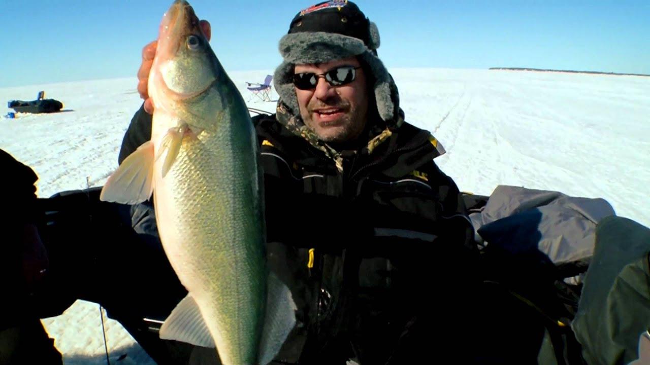 Hog callin 39 ice fishing lake winnipeg walleyes season for Lake winnipeg fishing report