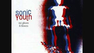 Sonic Youth - Small Flowers Crack Concrete