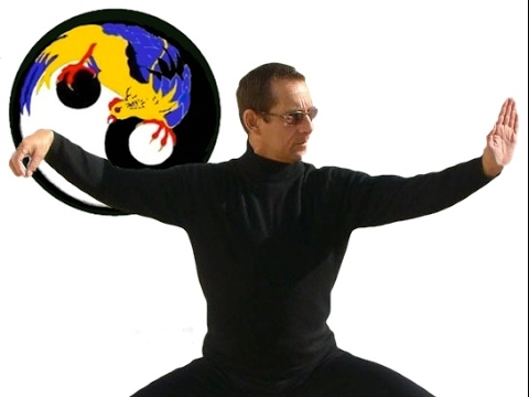 Golden Rooster Nei Jia - Wu Dang Short Hand Form - Round