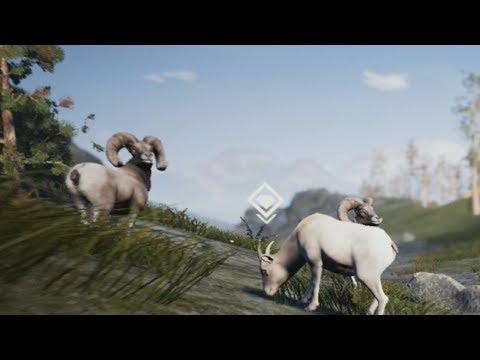 Bighorn Sheep (Hunting Simulator) (Episode 2)