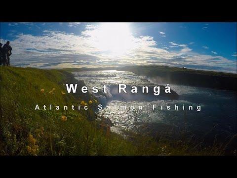 West Ranga  - Salmon Fishing In Iceland