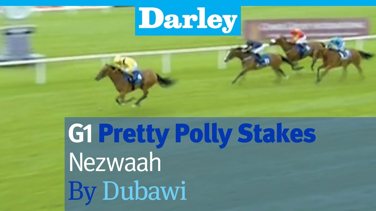 Pretty polly stakes betting online scoop 6 betting odds