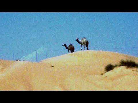 VAE Fahrt durch die Wüste von Dubai Drive through the desert of Abu Dhabi UAE  أبو ظبي