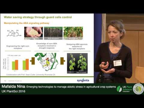 Mafalda Nina. Emerging Technologies to Manage Abiotic Stress in Agricultural Crop Systems