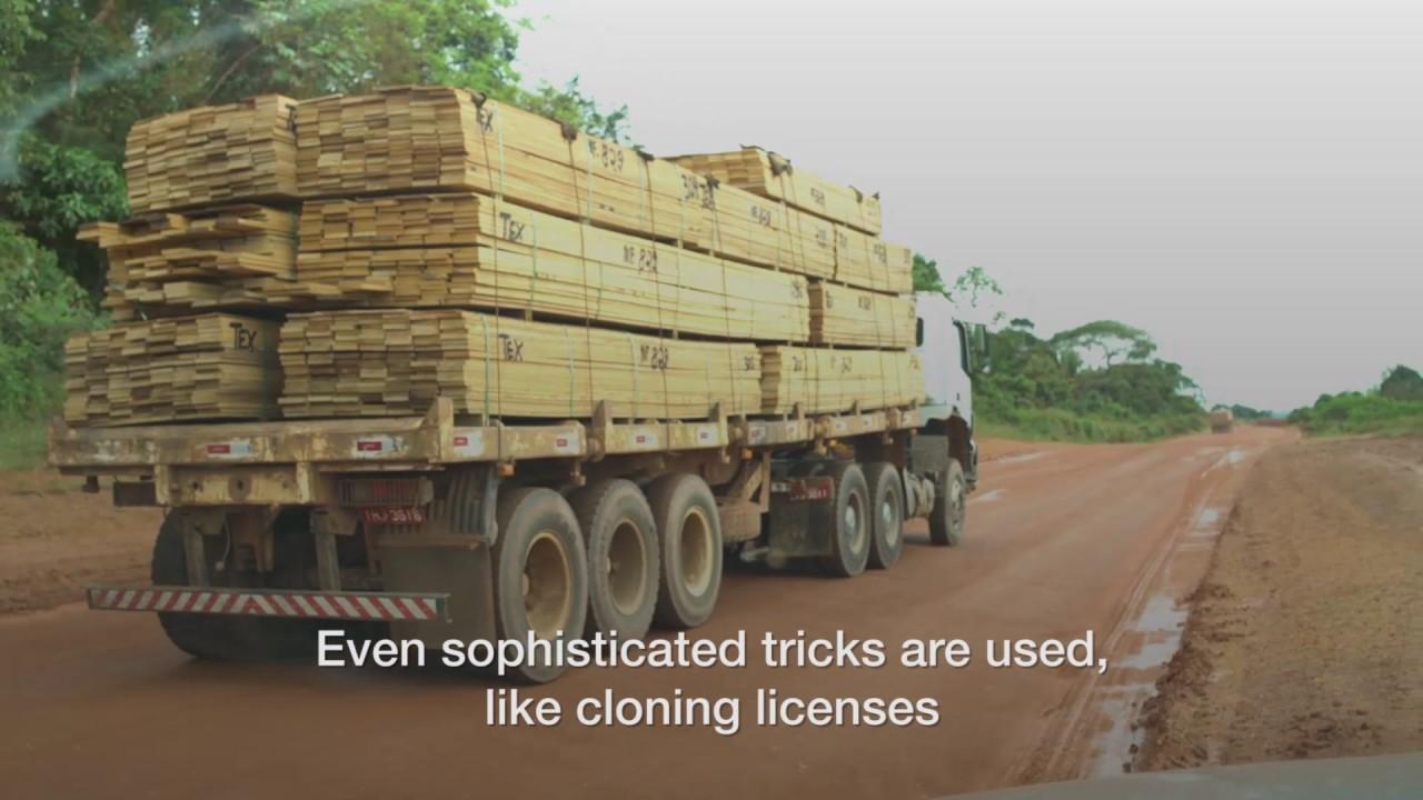 Brazil on verge of legitimizing Amazon land theft on a grand scale