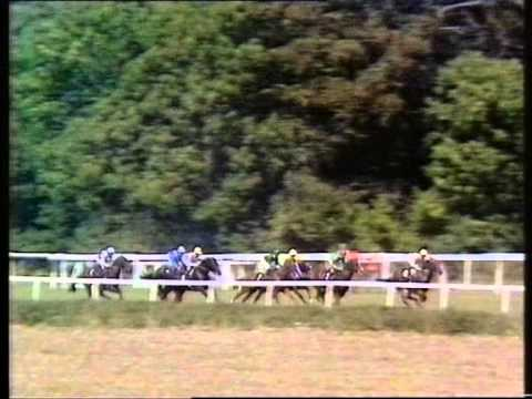 1990 Sussex Stakes