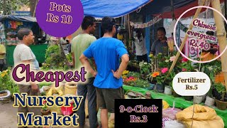 Cheapest Street Side Nurseries in Kolkata with Prices