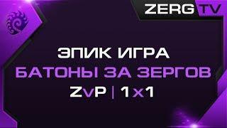 ★ ЭПИК !!! БАТОНЫ ЗА ЗЕРГА против ПРОТОССА | StarCraft 2 с ZERGTV ★