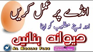 Video Mohabbat Me Pagal Karne Ka Amal || Mahboob Beqrar Ho Kr Hazir || Amdy Ka Amal || By Al Moalij Plus download MP3, 3GP, MP4, WEBM, AVI, FLV April 2018