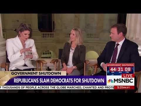 "MSNBC Panel: Democrats Should Be ""Worried"" About ""Poisonous"" Schumer Shutdown"