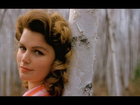 THE FILMS OF LEE REMICK