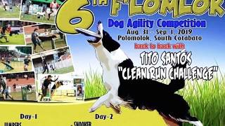 Disc dog frisbee longest catch competition plus #snookerdog #flomlokfestival  #doglover #cutedog