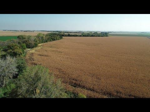 Nebraska Farm and Hunting Land For Sale   Dawson County Hunt and Farm   Cozad, NE
