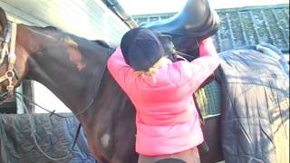 How to get your horse ready to ride