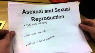 Asexual v.s. Sexual Reproduction