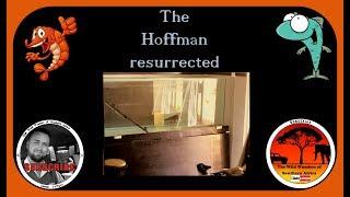 The Hoffman resurrected thumbnail