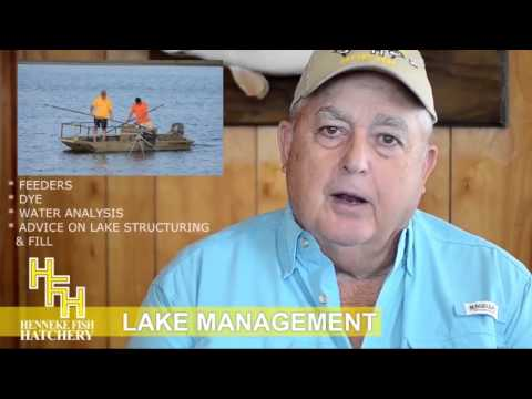 Texas Fish Farm, Feeder Fish | Kenneth Henneke Fish Hatchery