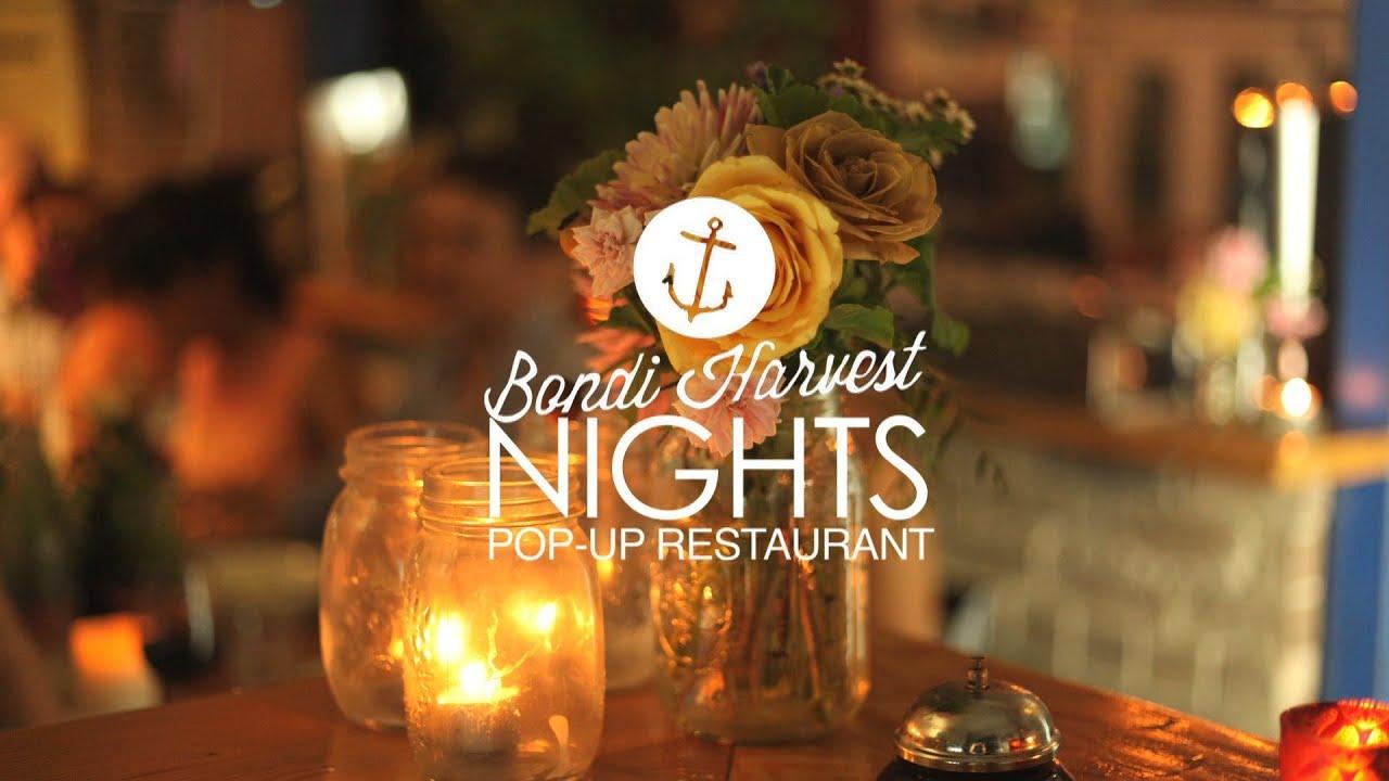 BONDI HARVEST NIGHTS every thursday in November - YouTube