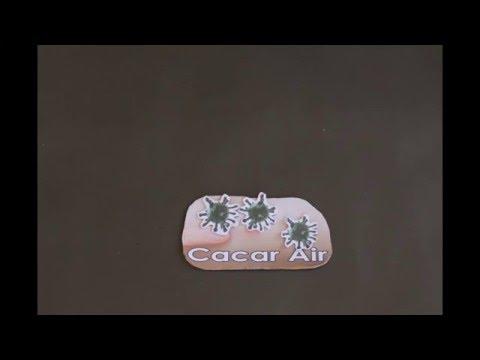 Video Edukasi : Cacar Air (Varicella)