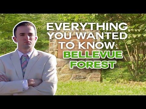 Bellevue Forest Arlington VA | Realtor Arlington VA | Real Estate In Arlington VA