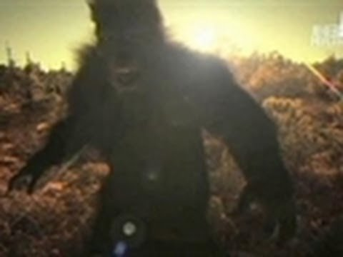 BFRO Reacts To Russian Yeti Claims | Finding Bigfoot