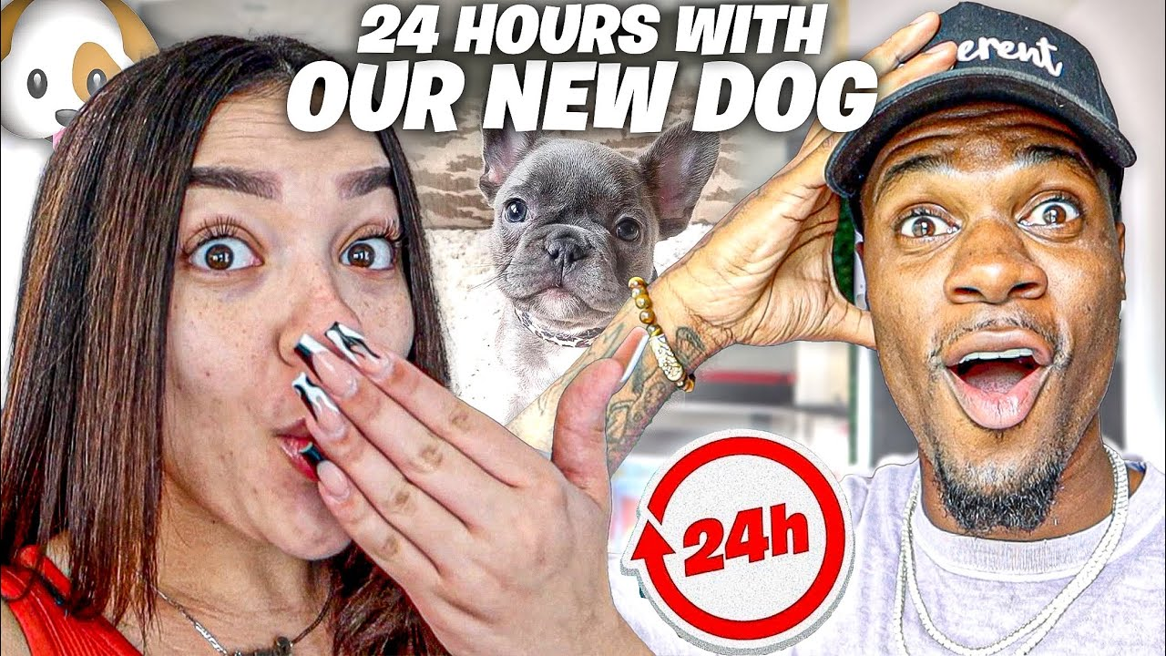 Download FIRST 24 HOUR WITH OUR NEW DOG!!!🐶 **Dog Name Reveal**