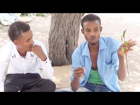 Film Gaaban (MA SOOME) Majaajilo 2014