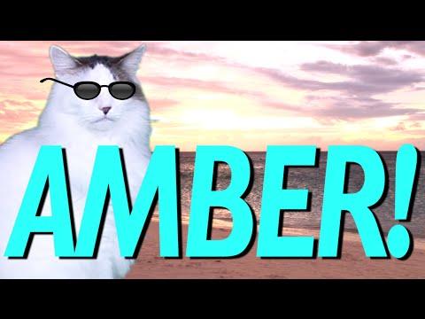 HAPPY BIRTHDAY AMBER! - EPIC CAT Happy Birthday Song
