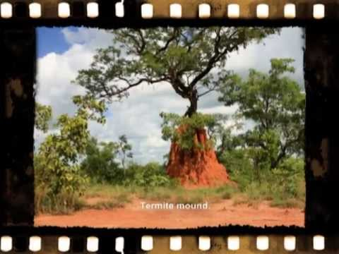 Burkina Faso 2008 Video Reel