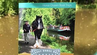 Horse drawn barge trip